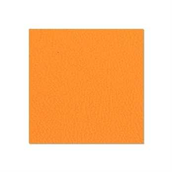 Adam Hall Birkensperrholz orange 6,9mm  Die Birkensperrholzplatte aus dem Hause Adam Hall ist in in orangener Farben und hat eine Stärke von 6,9mm. Die Platte wird meistens für die Herstellung von Cases verwendet wenn man diese in diesem Design erhalten