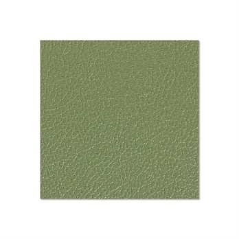 Adam Hall Birkensperrholz olivgrün 6,9mm  Die Birkensperrholzplatte aus dem Hause Adam Hall ist in in olivgrün und hat eine Stärke von 6,9mm. Die Platte wird meistens für die Herstellung von Cases verwendet wenn man diese in diesem Design erhalten möchte