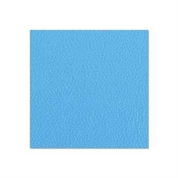 Adam Hall Birkensperrholz himmelblau 6,9mm  Die Birkensperrholzplatte aus dem Hause Adam Hall ist in in himmelblau und hat eine Stärke von 6,9mm. Die Platte wird meistens für die Herstellung von Cases verwendet wenn man diese in diesem Design erhalten mö