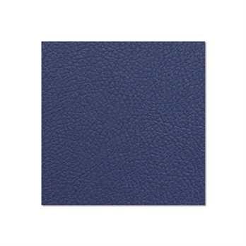 Adam Hall Birkensperrholz navy blau 6,9mm  Die Birkensperrholzplatte aus dem Hause Adam Hall ist in in navy blau und hat eine Stärke von 6,9mm. Die Platte wird meistens für die Herstellung von Cases verwendet wenn man diese in diesem Design erhalten möch