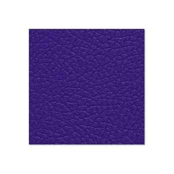 Adam Hall Birkensperrholz nachtblau 6,9mm  Diese Birkensperrholzplatte aus dem Hause Adam Hall ist in in nachblau und hat eine Stärke von 6,9mm. Die Platte wird meistens für die Herstellung von Cases verwendet wenn man diese in diesem Design erhalten möc