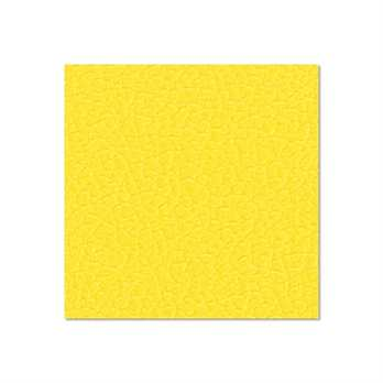 Adam Hall Birkensperrholz gelb 6,9mm  Die Birkensperrholzplatte aus dem Hause Adam Hall ist in in gelb und hat eine Stärke von 6,9mm. Die Platte wird meistens für die Herstellung von Cases verwendet wenn man diese in diesem Design erhalten möchte. Die Vo